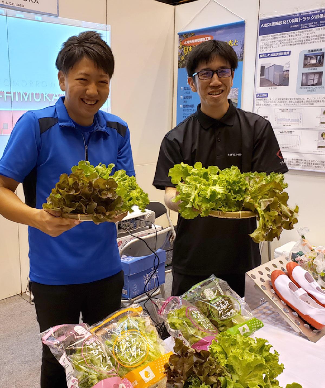 関連企業「株式会社ひむか野菜光房」